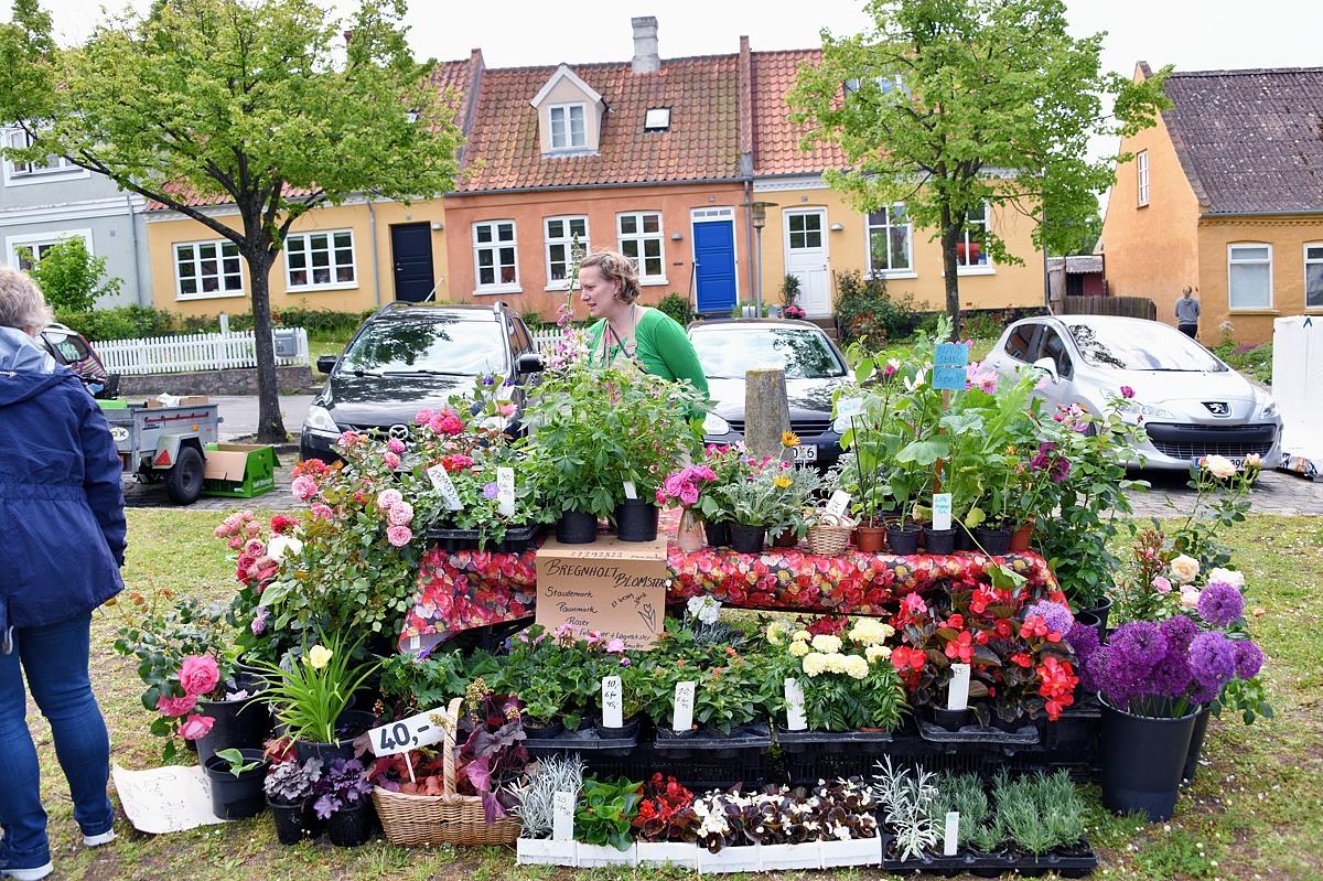 Sommermarked på Gammel Torv